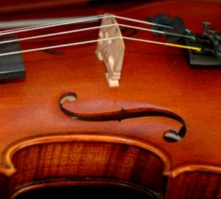 LINK: Sound of Violins